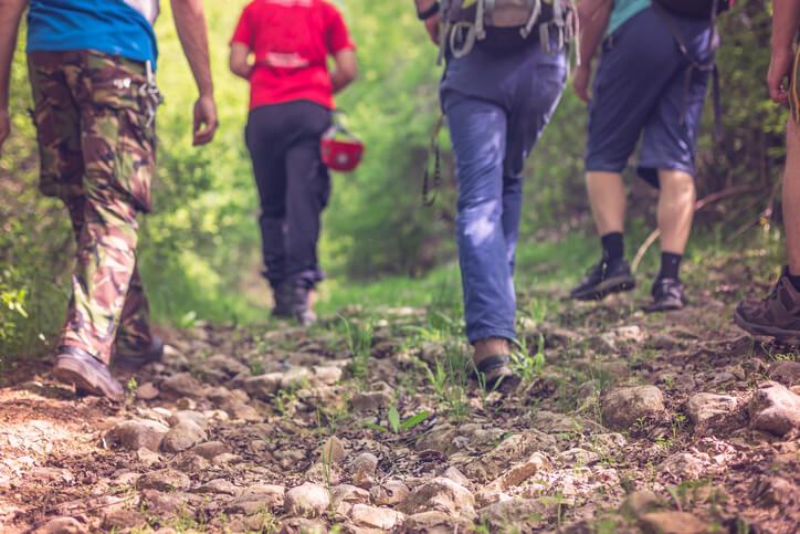 5 pessoas caminham sobre um trilha numa floresta